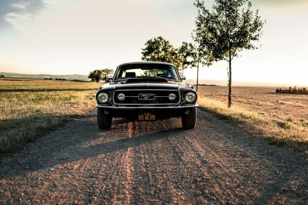 Wandbild 1967 Ford Mustang Fastback GT (Motiv V8 08)