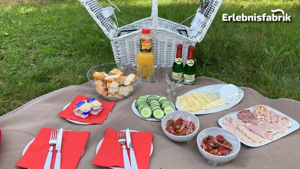 Picknick für Zwei in Dresden