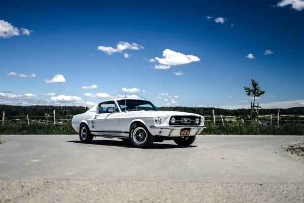 Wandbild 1967 Ford Mustang Fastback GTA 390 (Motiv V8 05)