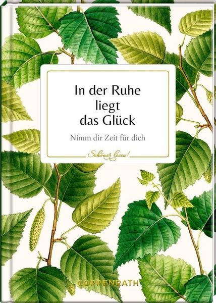 DDV Lokal - Coppenrath - Buch - In der Ruhe