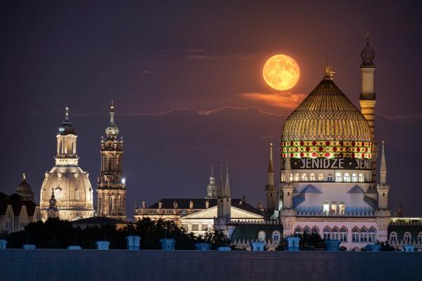 Wandbild Dresden (Motiv 00706)